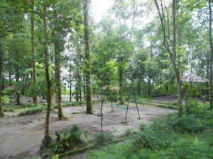 Park in Kaliurang
